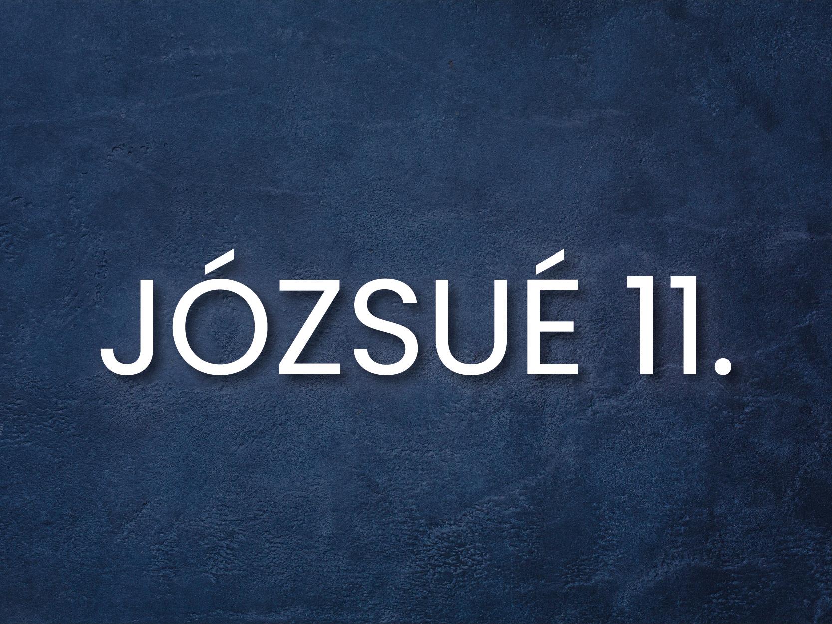 INFO_j11