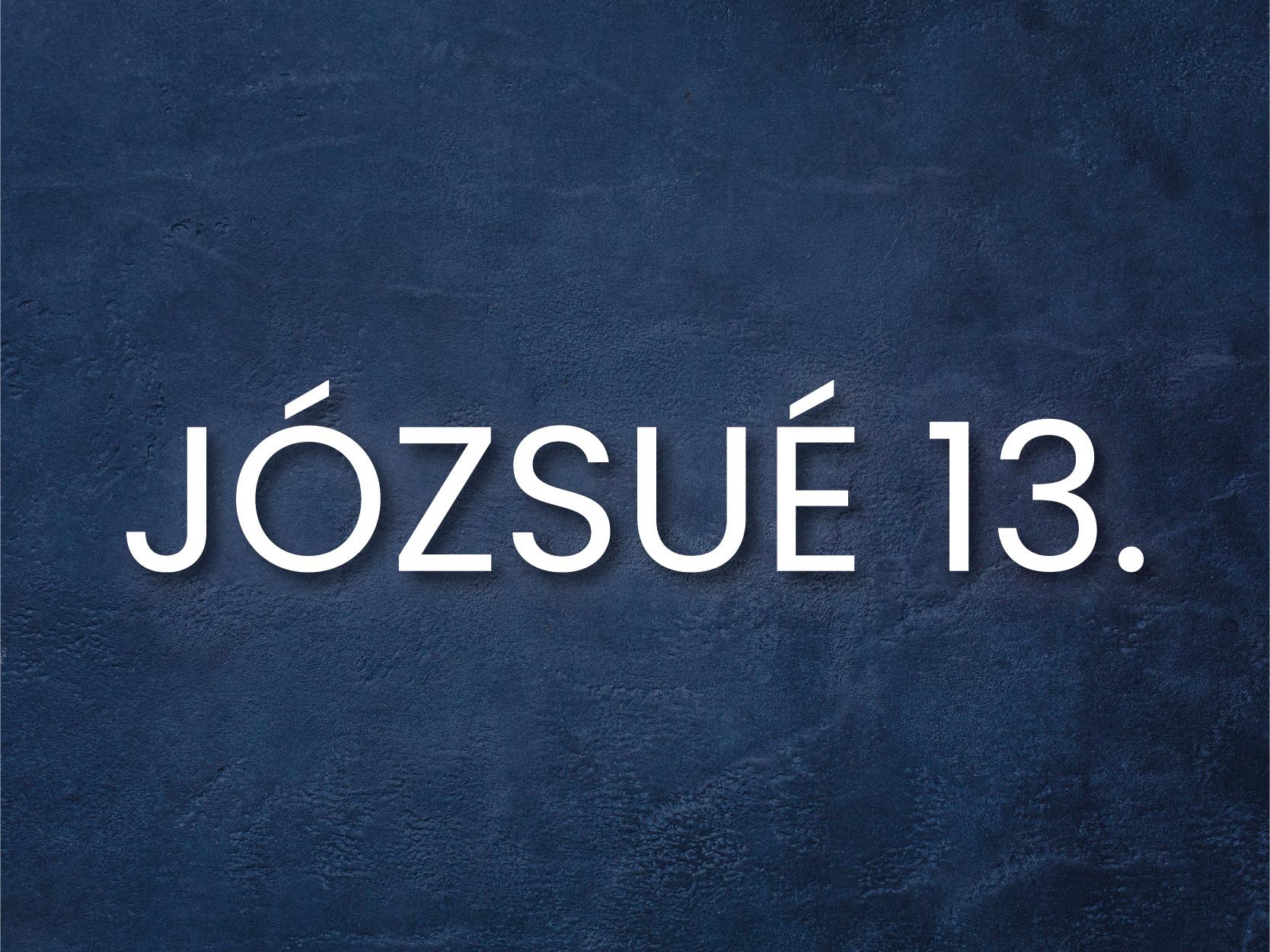INFO_j13