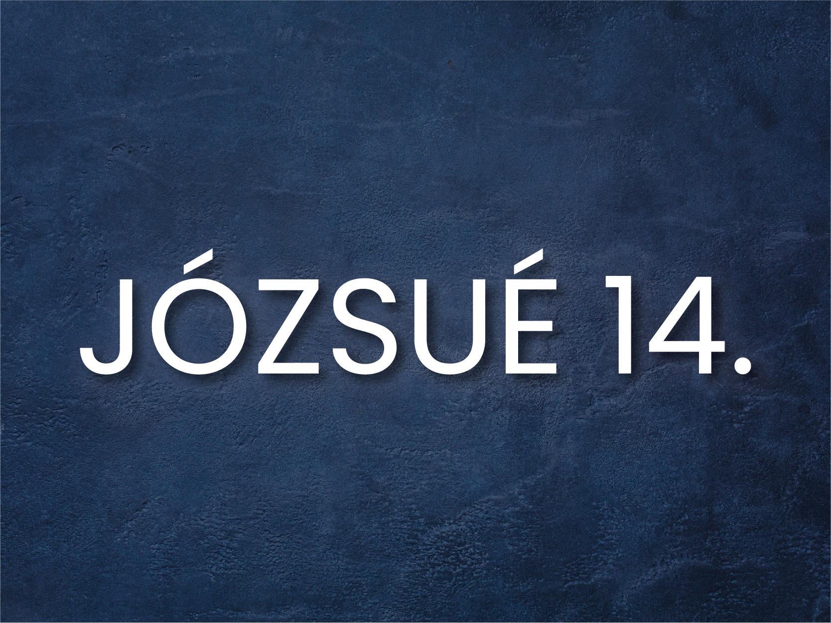 INFO_j14