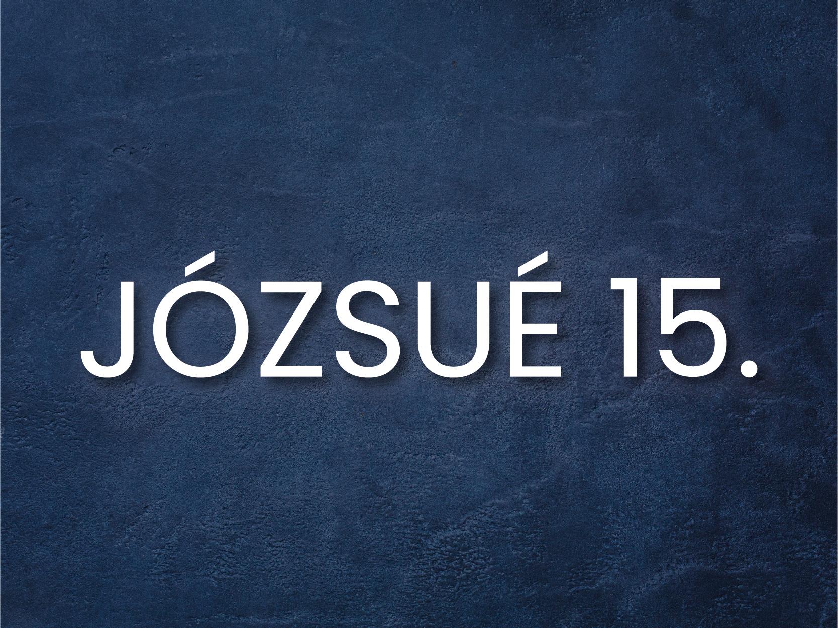 INFO_j15