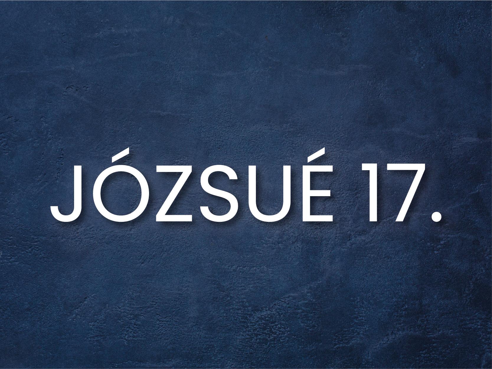 INFO_j17