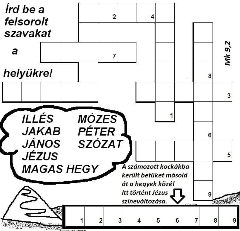 IMG_2062